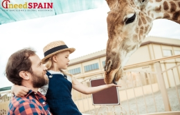 """North America,"" ""Chile,"" and ""Australia"" to appear in the  Barcelona zoo"